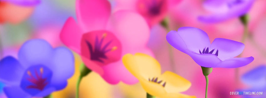 Spring Colorful Spring Flowers Free Facebook Covers Facebook