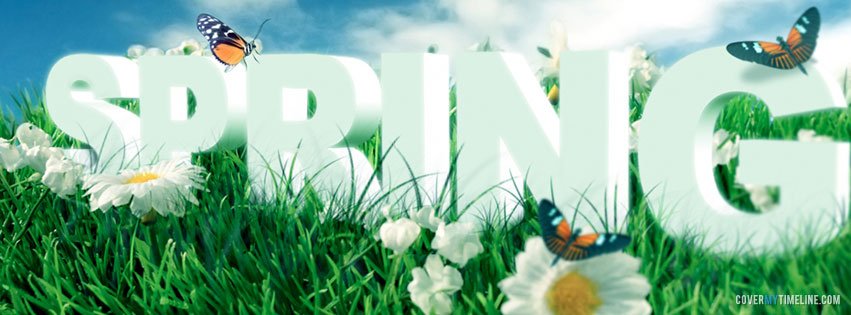 Spring Spring Flowers Butterflies Free Facebook Covers