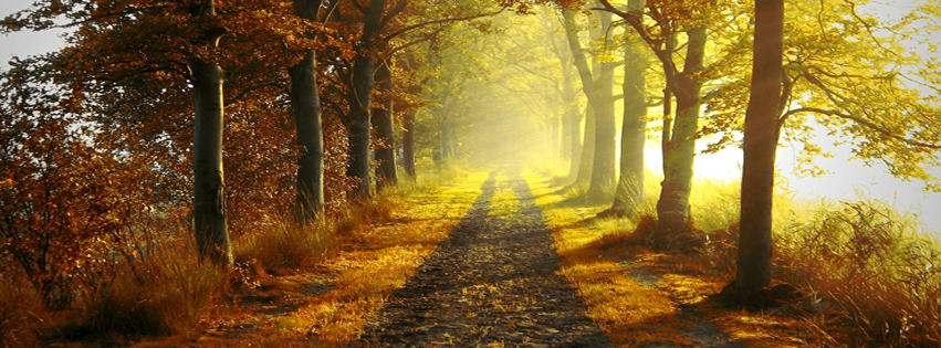 fall-road-autumn-facebook-timeline-cover